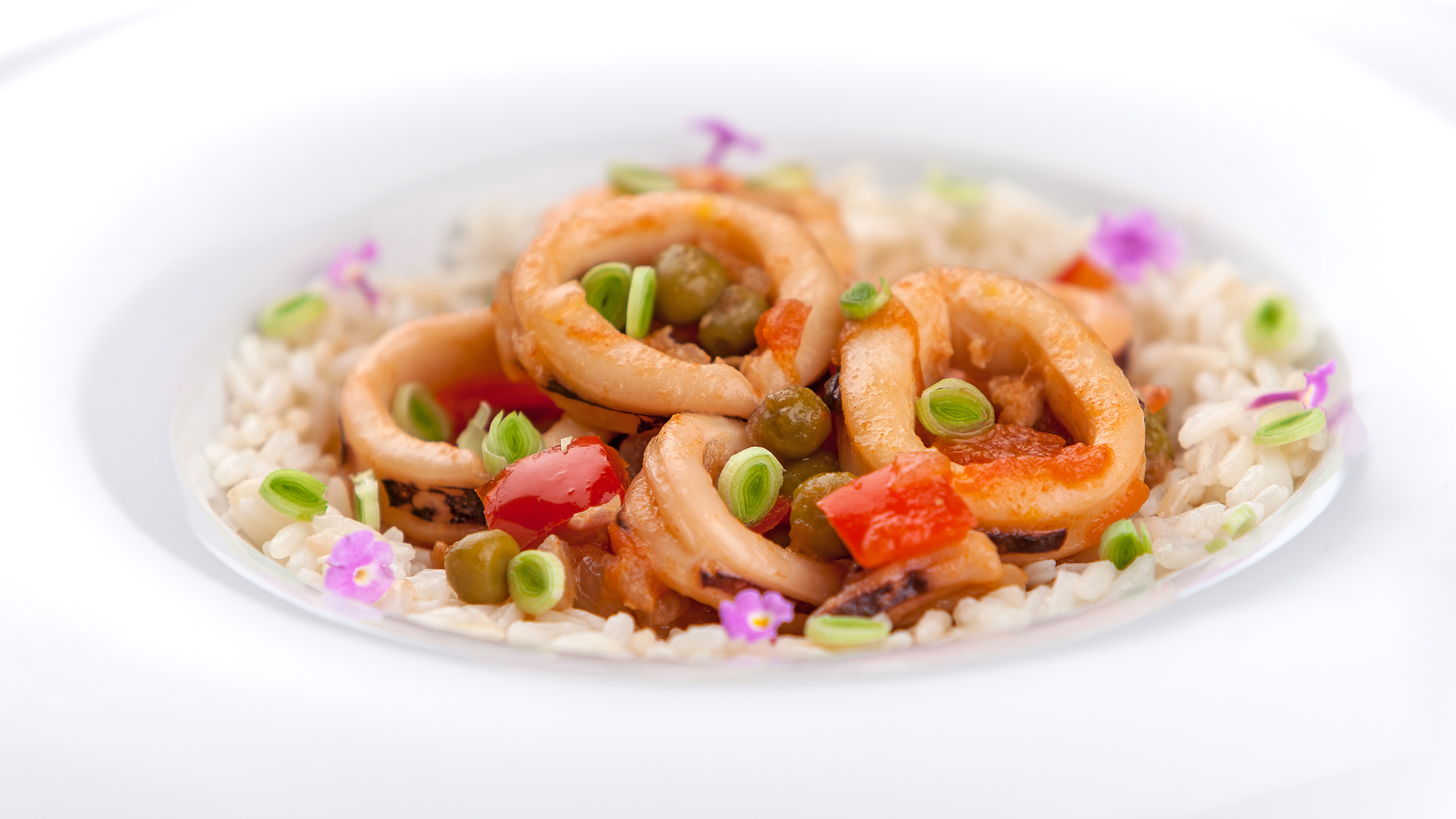 gastronomia 27 profand
