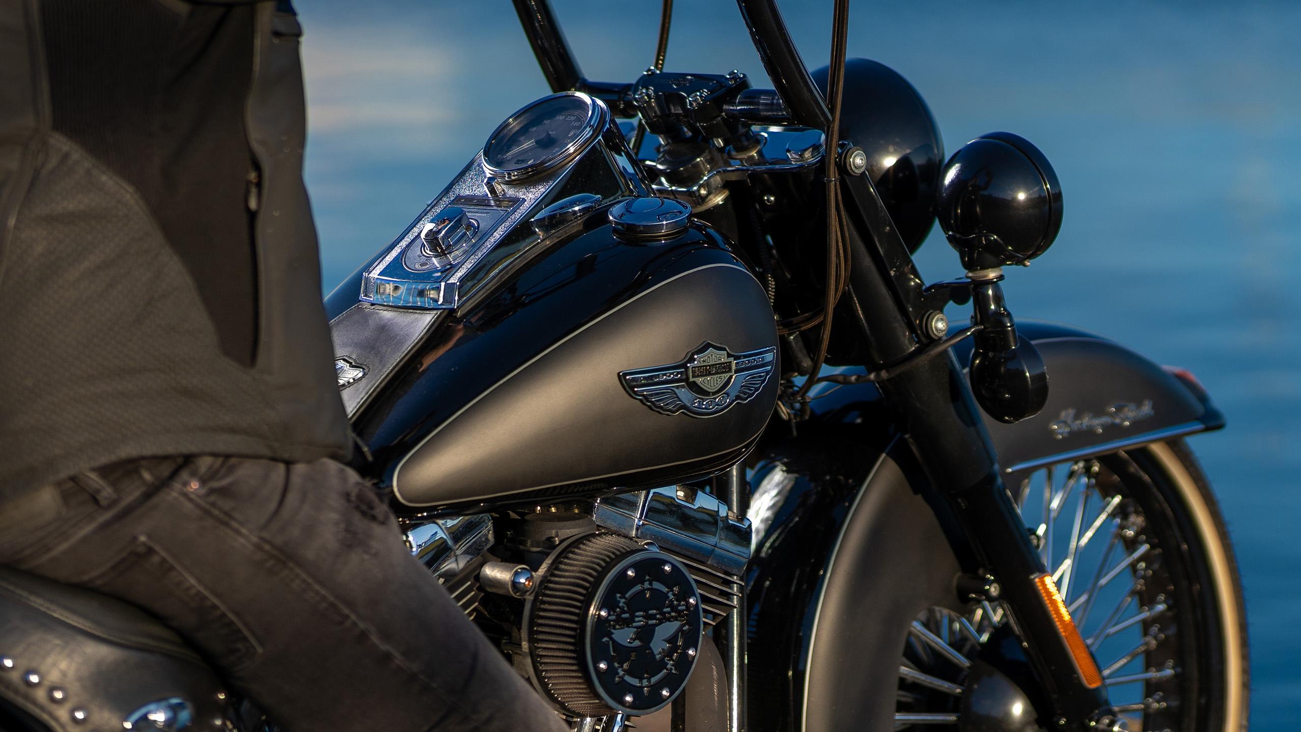 Harley Davidson Heritage Softail 3