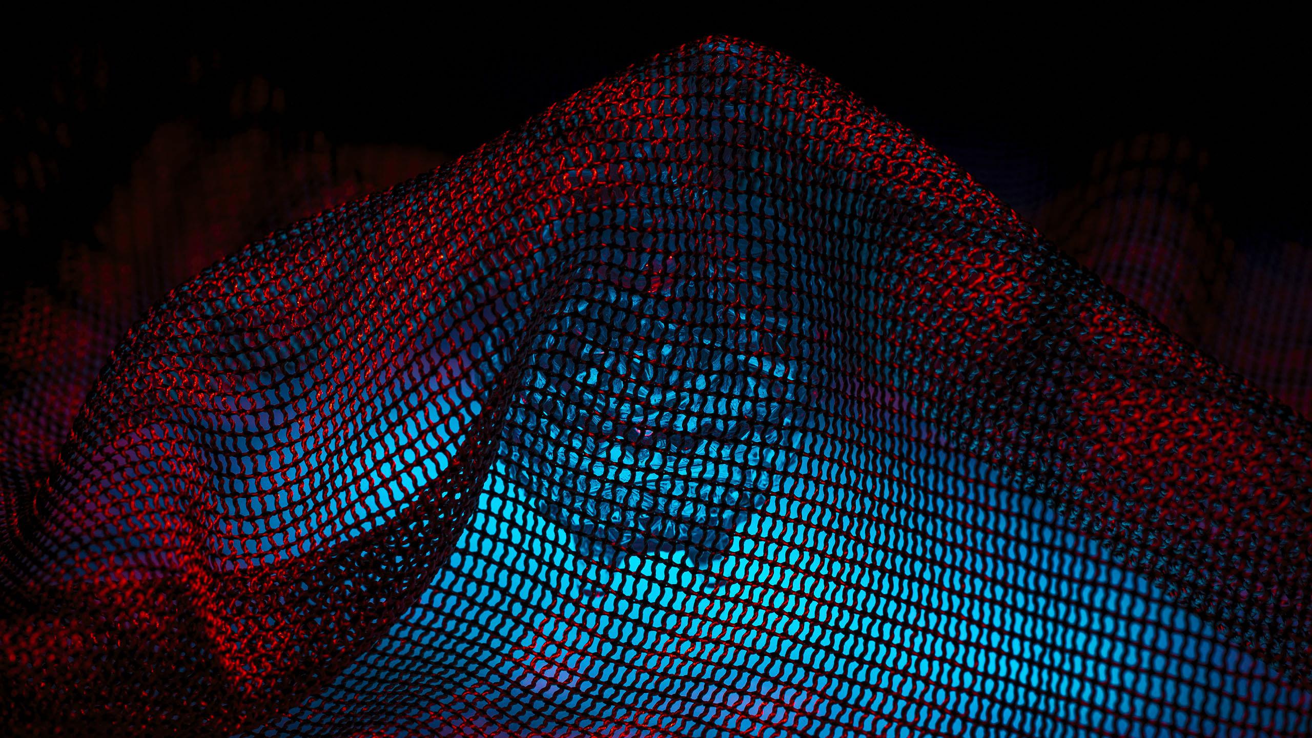 In the net 2